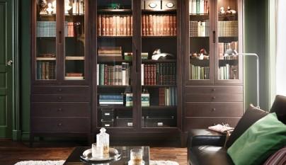 salon biblioteca13