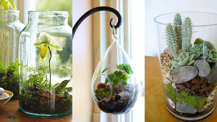 Jardines vegetales para interior for Jardines con piedras y macetas