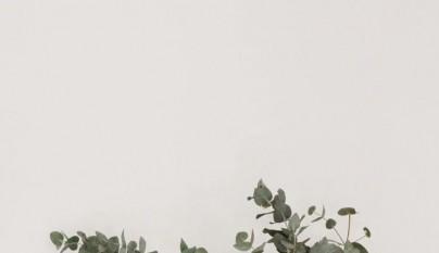 Decoracion eucalipto 6