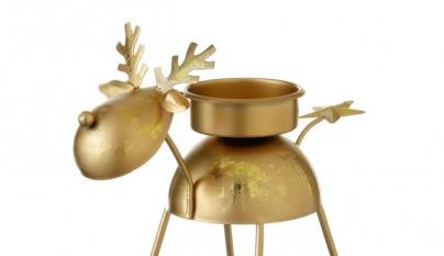 Destellos de oro3