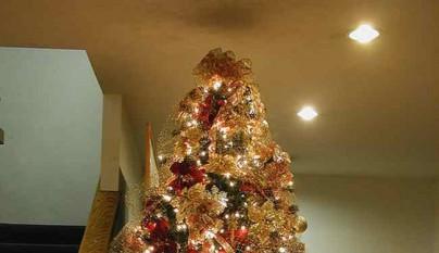 arbol de Navidad25