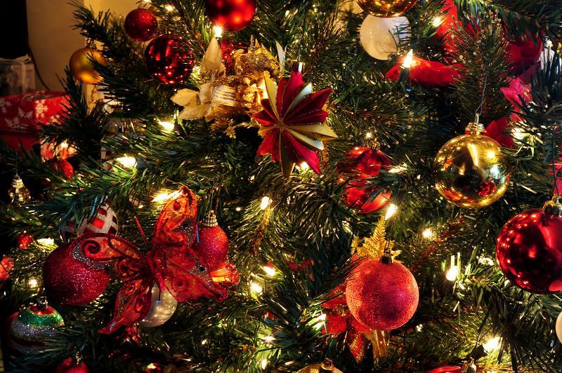 fotos de rboles de navidad decorados
