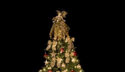 arbol de Navidad4