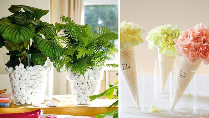Ideas para decorar con plantas y flores for Piedras para decorar plantas