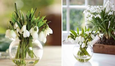 decorar-casa-flores-invierno4