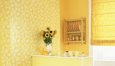 Cocina amarilla20