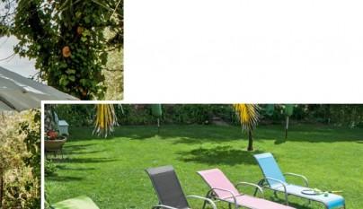 Guia Jardin Conforama21