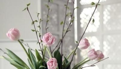 Ideas primavera flores 6