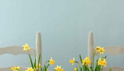 Mesas Pascua 1