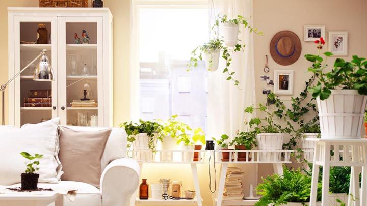 claves para iluminar una casa sana