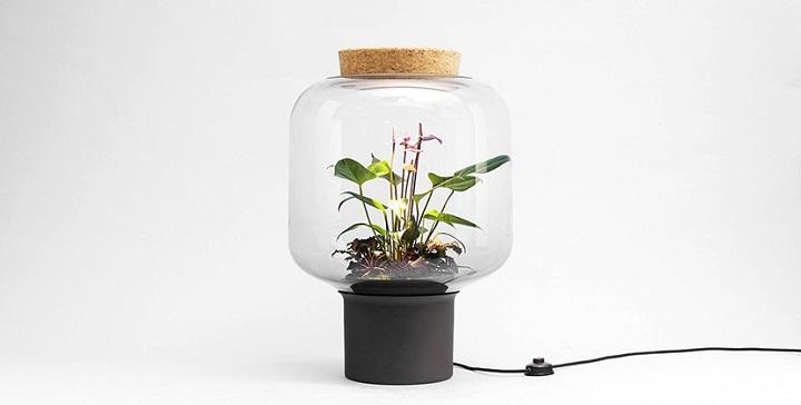 lamparas cultivando plantas 11