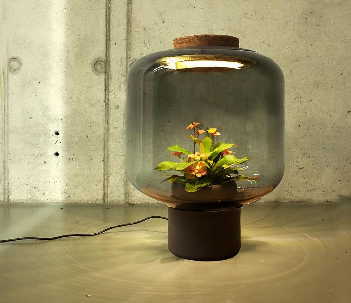 lamparas cultivando plantas 3
