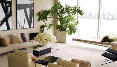 Decorar con terrarios de cristal - Mejores plantas para interior ...
