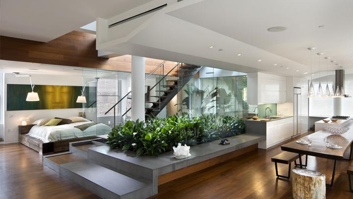 las-mejores-plantas-para-interior