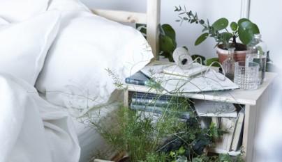 Ideas plantas dormitorio 3