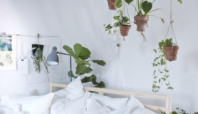Ideas plantas dormitorio 4