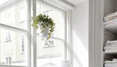 Ideas plantas dormitorio 7