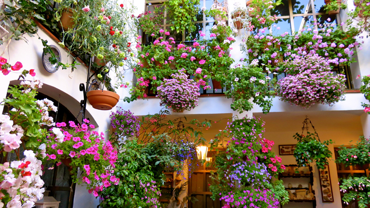 C mo decorar un patio andaluz for Ideas para tu jardin paisajismo