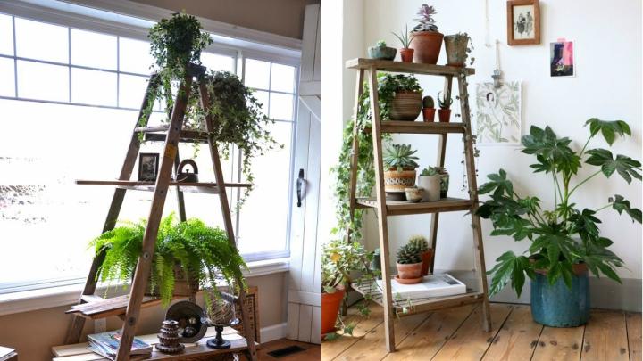 escaleras plantas
