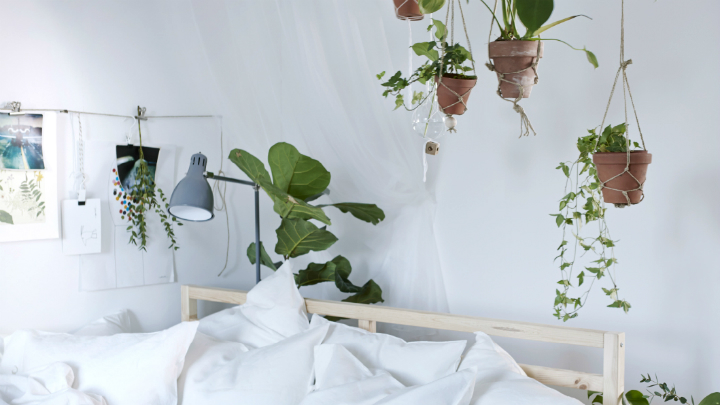 ideas para decorar con plantas el dormitorio