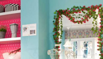 Ideas plantas alegria 2