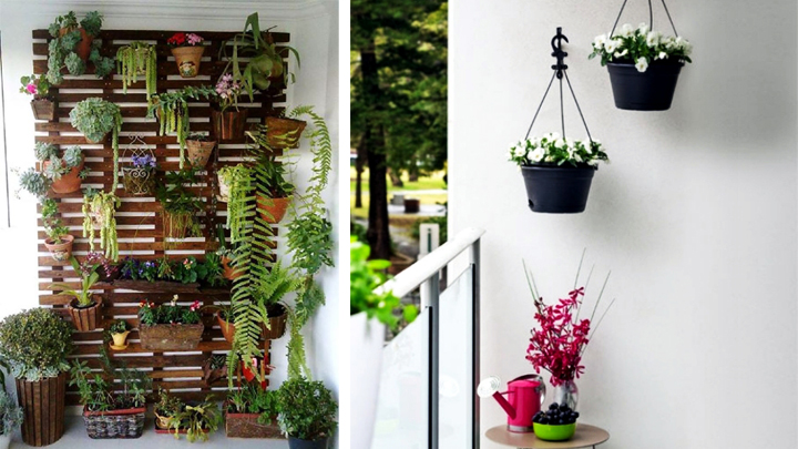 Decorar balcones peque os for Plantas colgantes para balcones