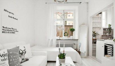 Alegria paredes blancas 13