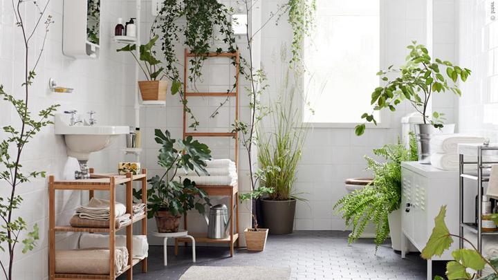 Ideas Originales Baño:originales ideas para renovar el cuarto de baño
