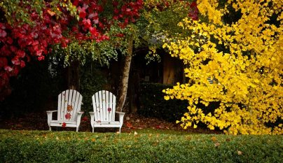 jardin otono