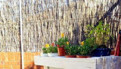 palets terraza11