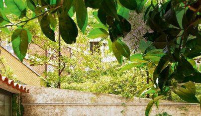 palets terraza17