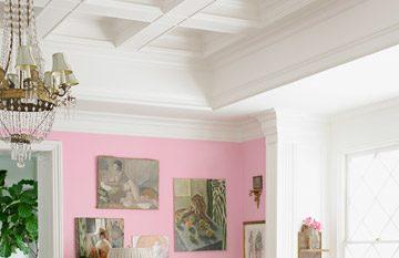 salon rosa14