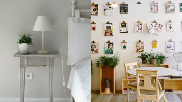 fotos-flores-redecorar