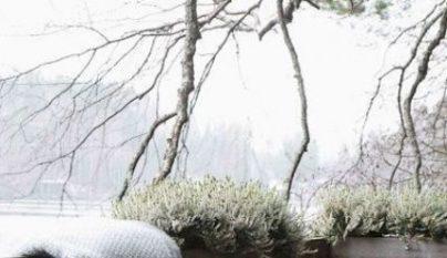 ideas-terrazas-invierno-11