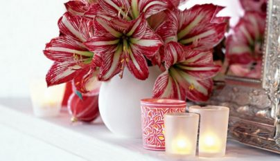 navidad-blanco-y-rojo17