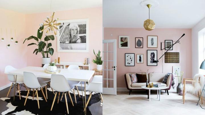 paredes-rosas