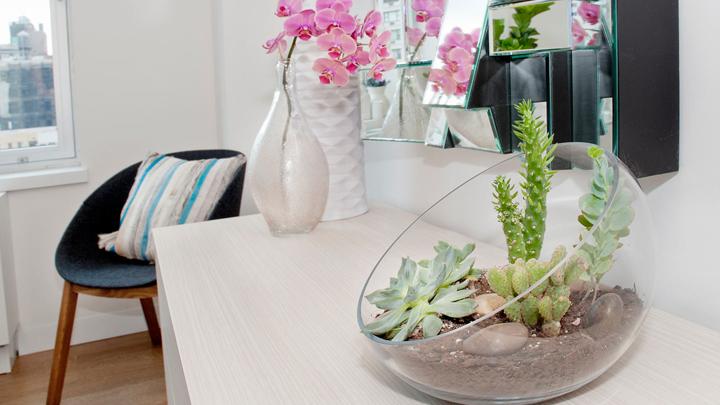 Decorar con cactus plantas suculentas y terrarios - Decoracion para terrarios ...
