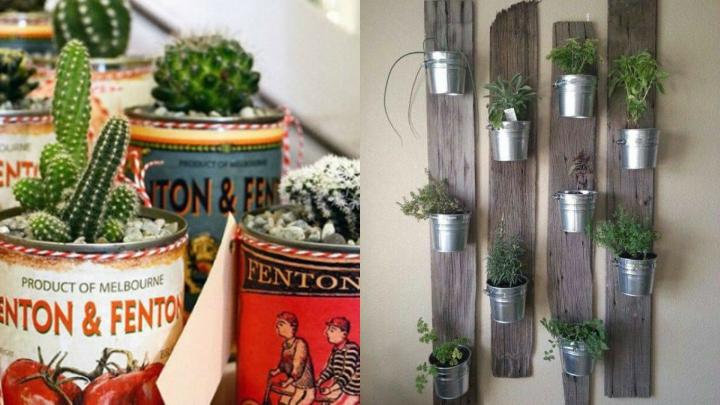 plantas-botes-metalicos