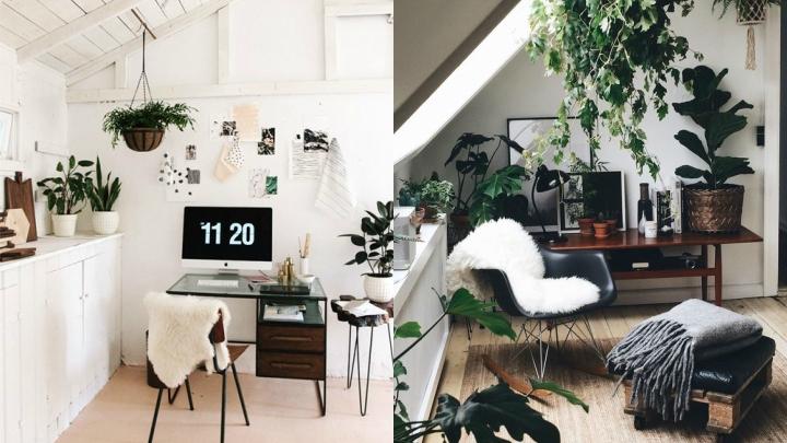 Ideas para tener un despacho m s acogedor for Como disenar un despacho