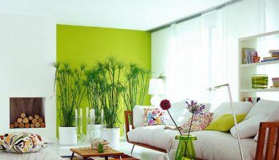 Fotos de salones decorados en verde - Imagenes de salones decorados ...