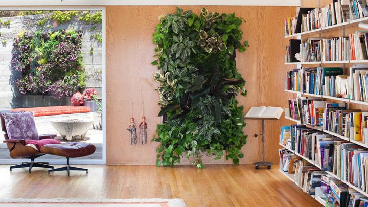 habitaciones-decoradas-con-plantas