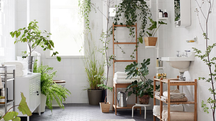 decoracion-bano-natural-plantas