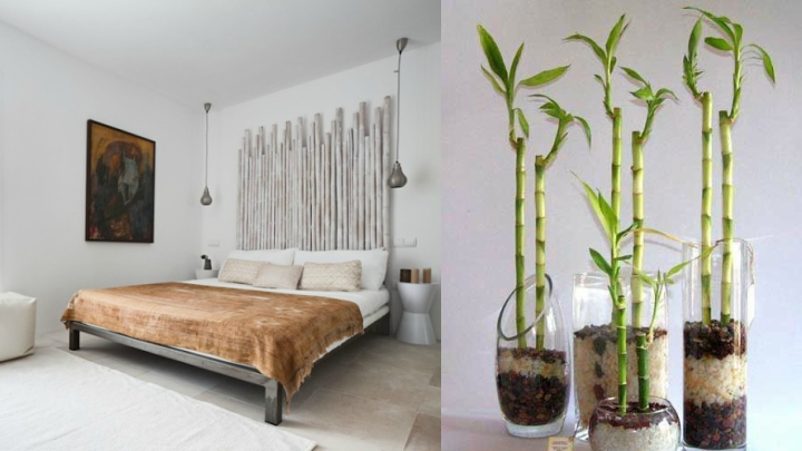 ideas-decoracion-bambu