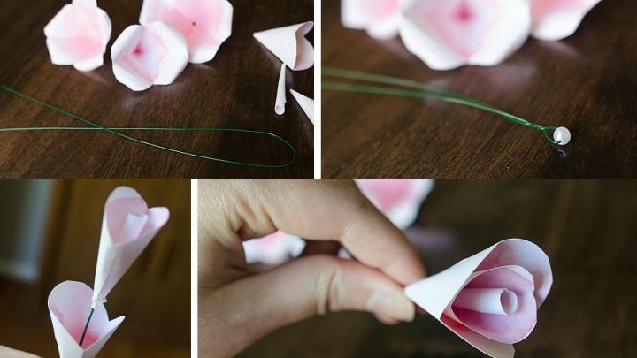 rosas-alambre