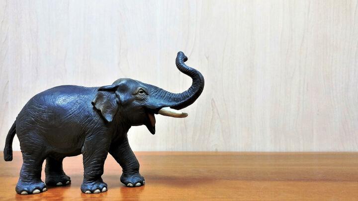 elefante-de-la-suerte-trompa