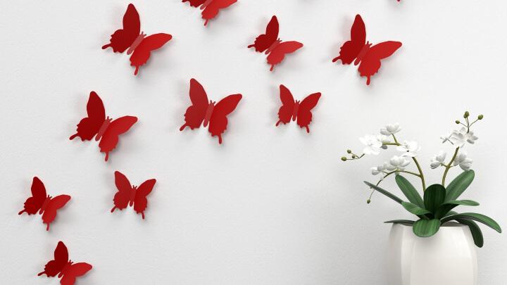 mariposas-rojas-pared-blanca