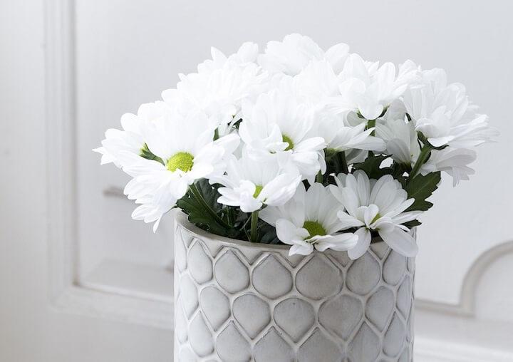 flores-blancas-en-un-jarron