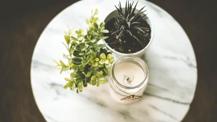 velas-y-plantas