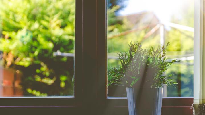 ventana-con-maceta