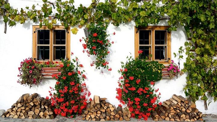 fachada-con-flores